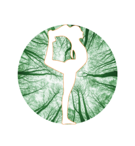 International Centered Yoga Association